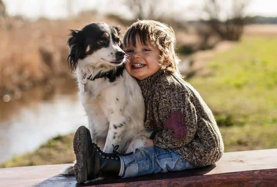 Photo of Çocuğunuza hayvan sevgisi aşılayın