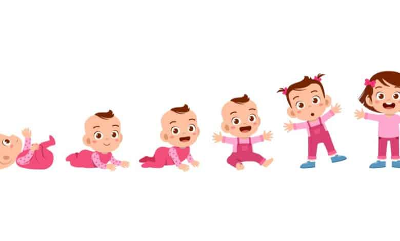 bebek-persentil-tablosu