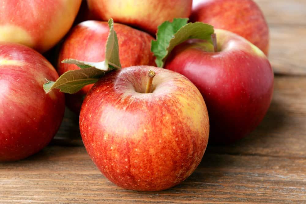 15.hafta-elma