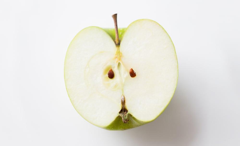 5.hafta-elmacekirdegi
