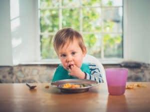 bebek - ek gıda