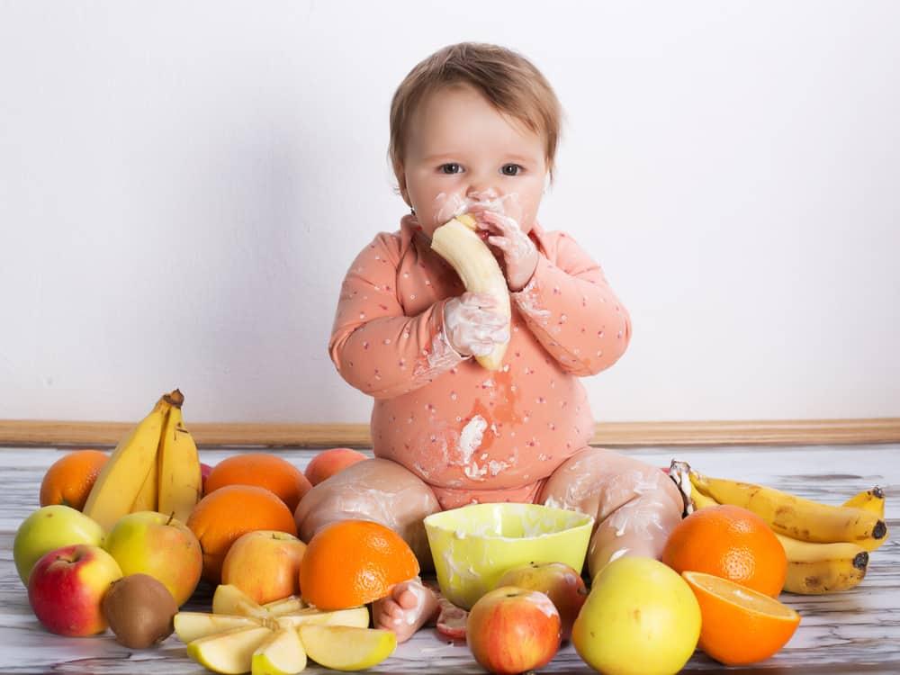 ay-ay-bebek-beslenmesi