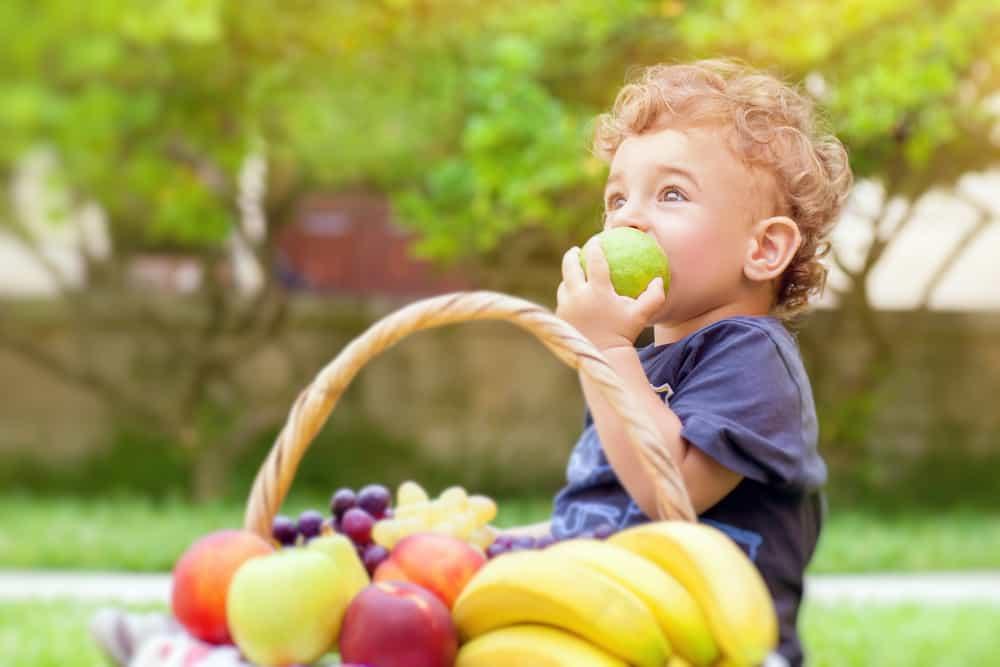 ek gıdaya geçişte meyve sebze listesi