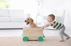 Çocuklar ve Evcil Hayvanlar