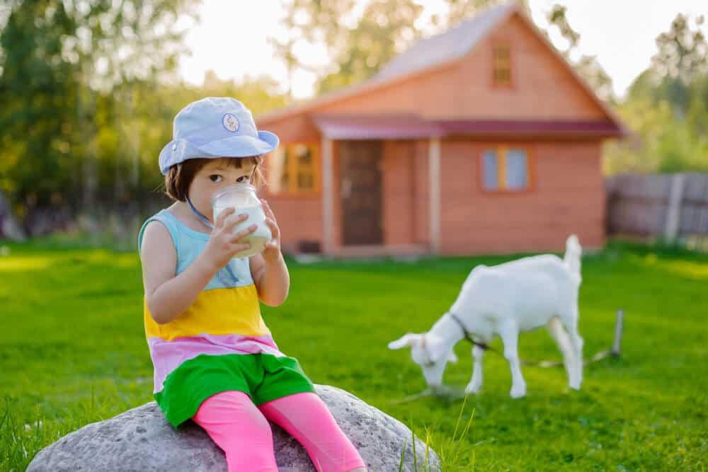 bebeğinize keçi sütü vermeniz için 5 neden