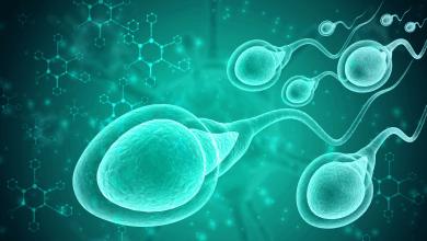 Photo of Sperm Testi Nasıl Yapılıyor?
