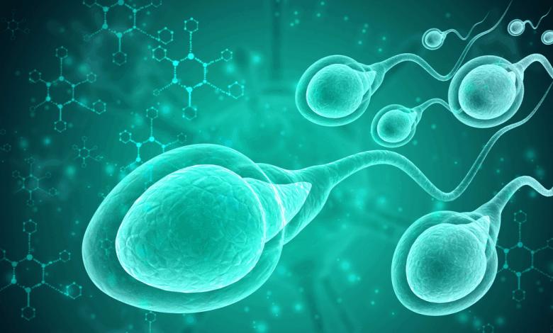 sperm testi nasil yapiliyor