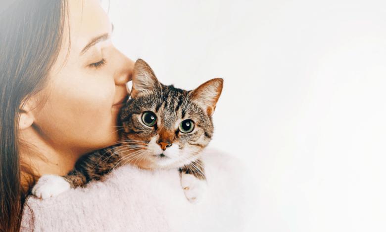 anne adaylari evcil hayvan besleyebilir mi