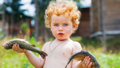 Photo of Bebeğim Ne Zaman Balık Yiyebilir ve En Faydalı Balıklar Hangileridir?