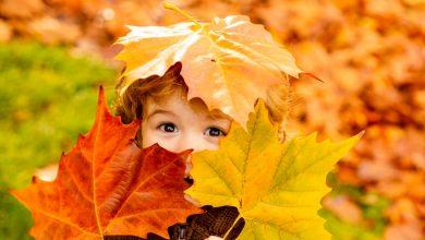 Photo of Sonbaharda Çocuk İle Yapılacak Aktiviteler