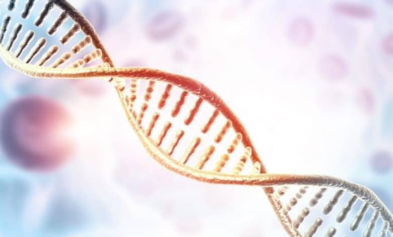 homozigot-ve-heterozigot