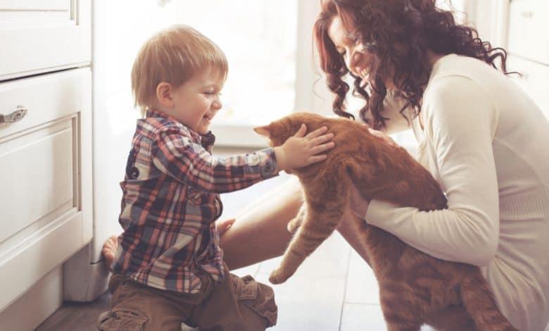 evcil-hayvanlar-ile-bebekler-ayni-evde-yasayabilir-mi