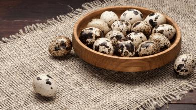 Photo of Bebekler İçin Bıldırcın Yumurtasının Faydaları Nelerdir, Nasıl Tüketilmelidir?