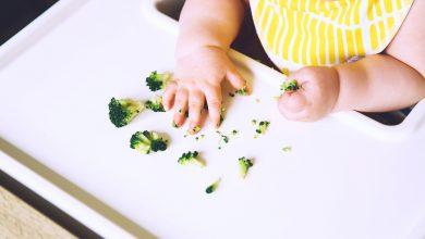 Photo of Ek Gıda Hakkında Merak Edilenler: Bebekler için Ek Gıdaya Geçiş Rehberi